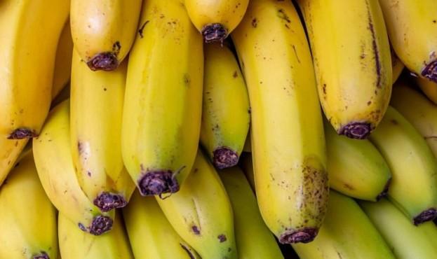 bananas-4317452_1920-23183