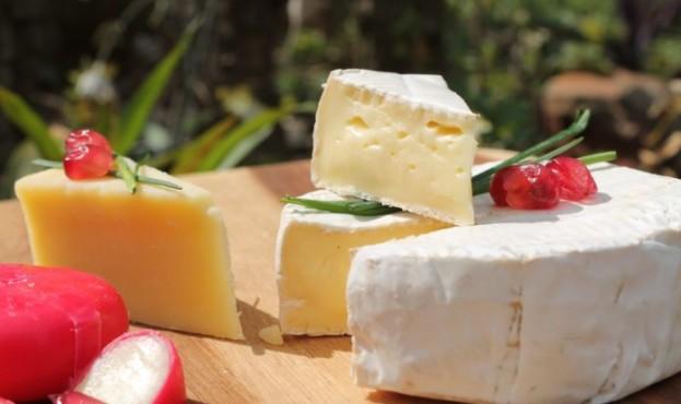 cheese-2829034_1280-696x464