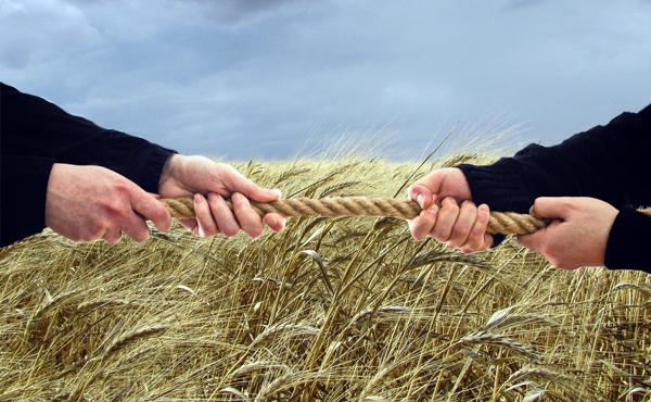 fermeri-vs-agroxoldingi---nazvano-najbilsh-perspektivnu-model-rozvitku-agrosektoru-ukrayini-8600