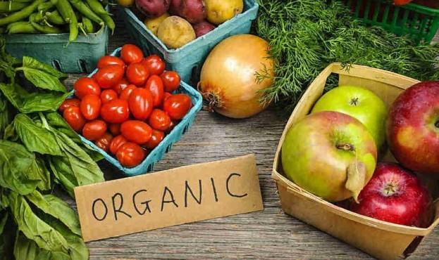 organic-6dd44ff7b84b85d35981254202ff74f2