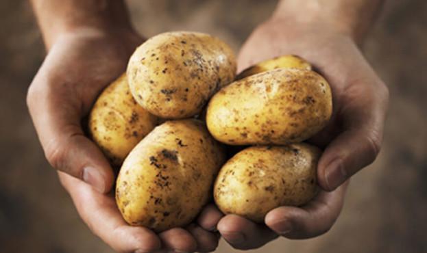 potatoes-in-hand-e1512425021598