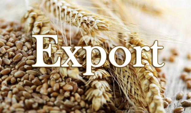 зерно експорт