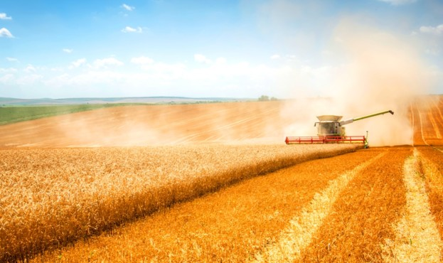 Image-picture-wheat-field-and-harvester-20190117-GLO-EN