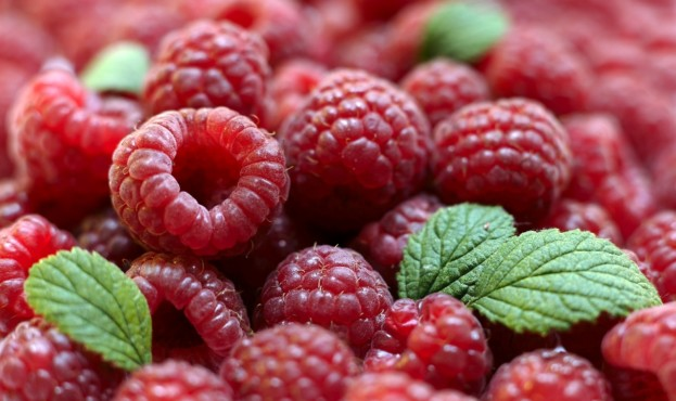 Berries of a ripe raspberry in a considerable quantity