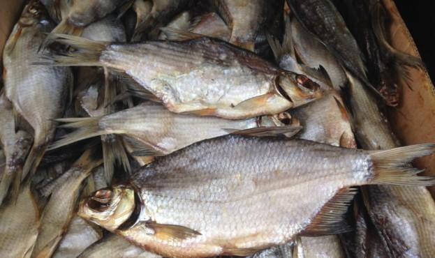 ryba-vyalenaya-v-assortimente-photo-cc10