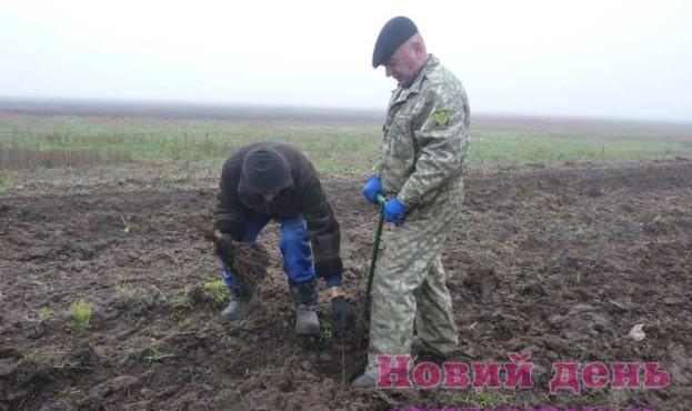 Idet-vysazhivanie-novoj-lesopolosy-v-Golopristanskom-rajone-Hersonshhiny