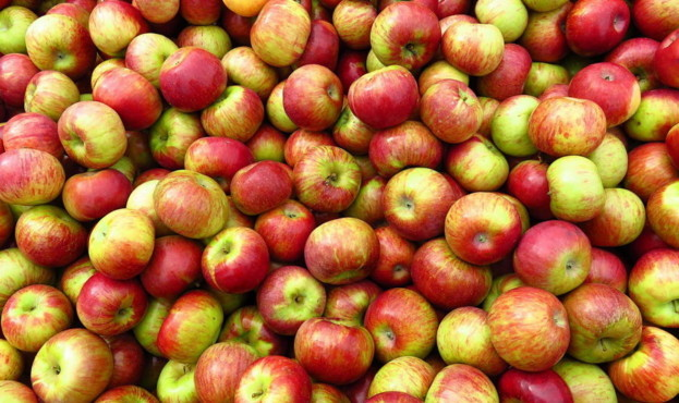 apple-1-623x370