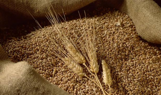 bag-wheat