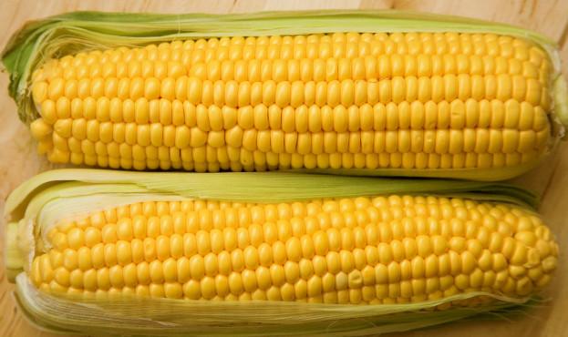 corncobs_0