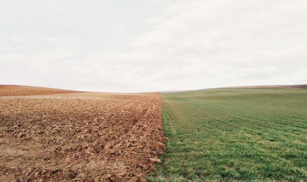 farmland-801817_960_720