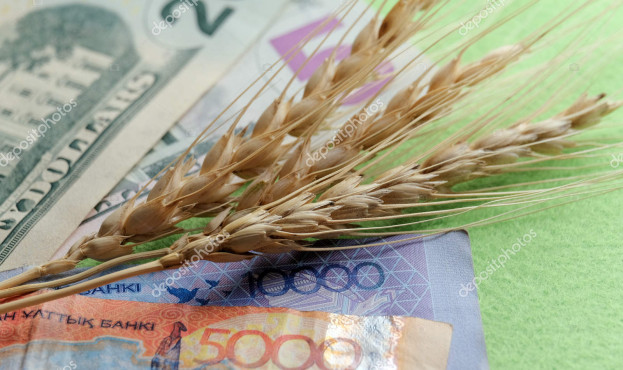 Three spikelets of wheat lie on the banknotes of the United States and Kazakhstan. Twenty five dollars and fifteen thousand tenge. The concept of the cost of grain, trade relations of agriculture.
