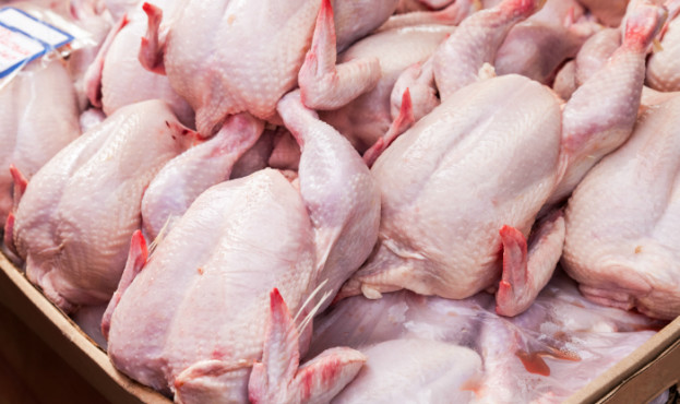 poultry_exchange_featured