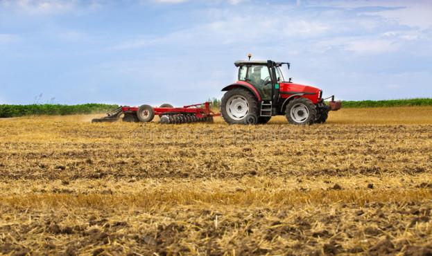 трактор-ку-ьтивируя-по-е-стерни-пшеницы-выпарку-урожая-43075897