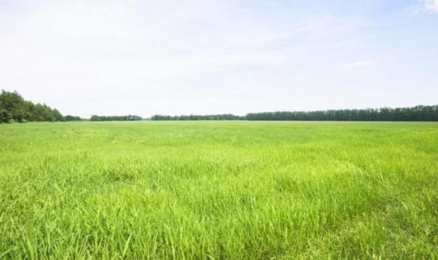 1475848400_zemelnyy-uchastok-pod-industrialnyy-park-sevastopolya-obeschayut-vydelit-v-iyune