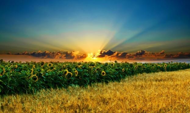 Природа-Украины
