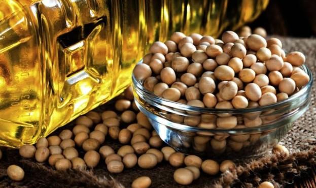 soevoe-maslo-proizvodstvo-i-eksport-1024x672