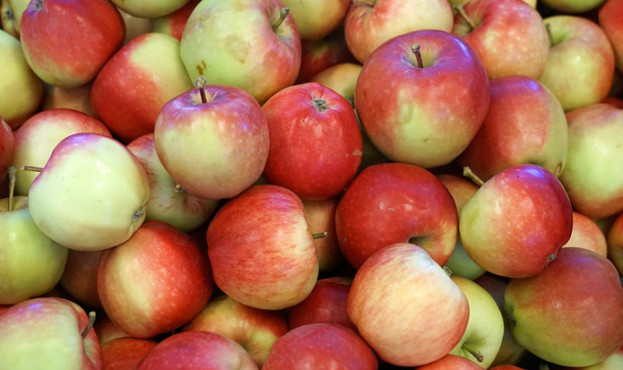 5ce452b-apple