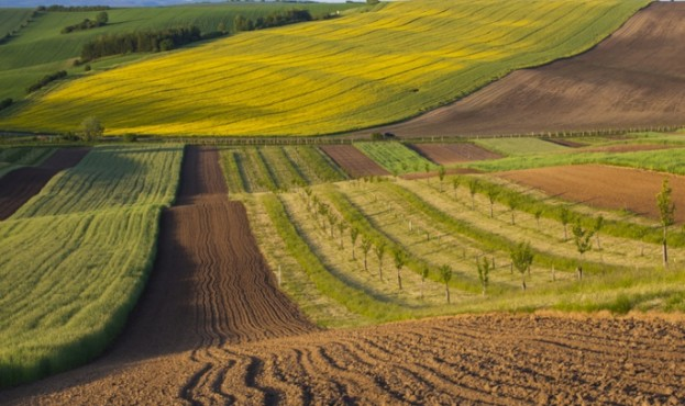 Росія забиратиме земельні ділянки у кримчан