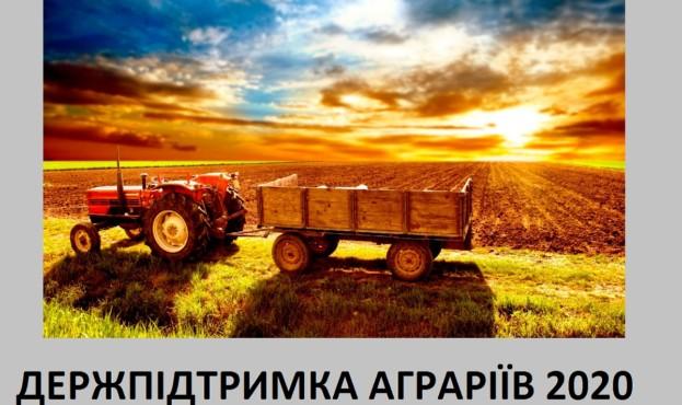 derjpidtrimka-21472
