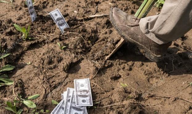 depositphotos_116958686-stock-photo-farmer-planting-money