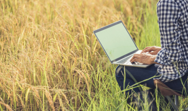 farmer-rice-field-with-laptop_1150-6048