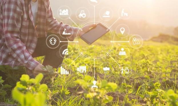 hombre-del-granjero-de-la-tecnología-agricultura-que-usa-tableta-118042293