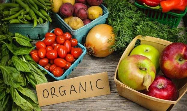 prodazha-organicheskih-produktov-v-ukraine
