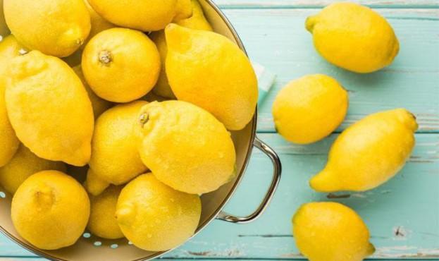 yak-zbergati-limoni-v-domashnh-umovah-zamorozheniy-limon_822