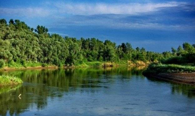 річки України