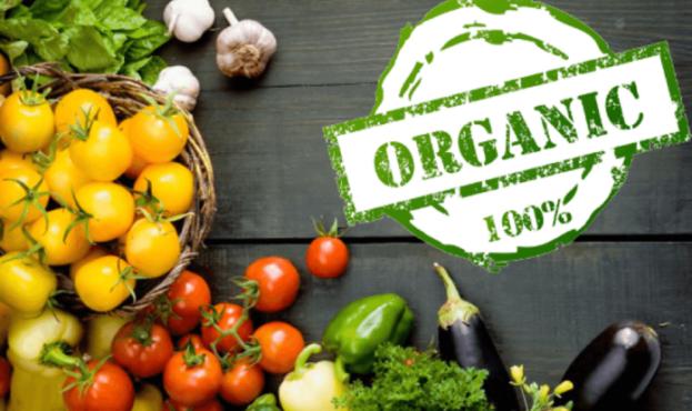 organic-1-696x439