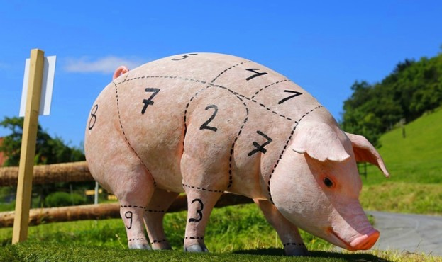 c61de2f-pig