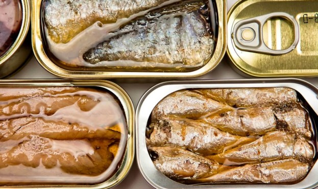 canned-fish-567656464