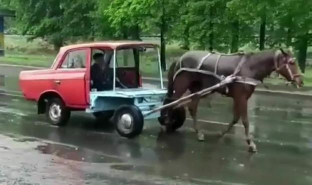 horse-car55