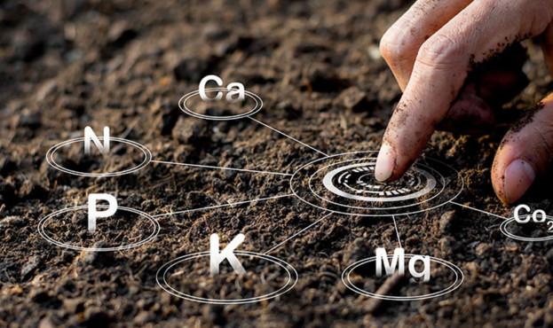 soil-analysis-1-copy3