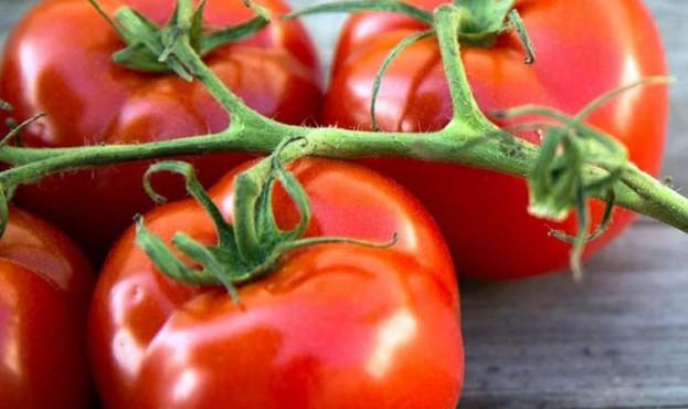tomatoes-health-big