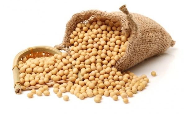 depositphotos_67452073-stock-photo-gold-soybeans-on-white