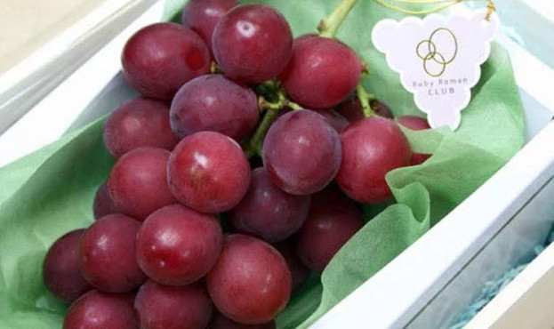 grape-1