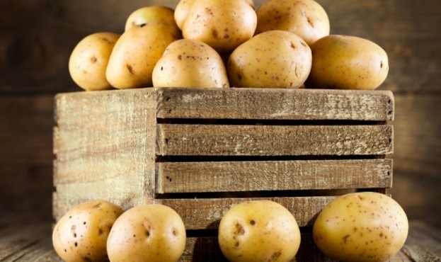 картопля-920x675