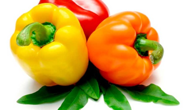 sweet-pepper-1