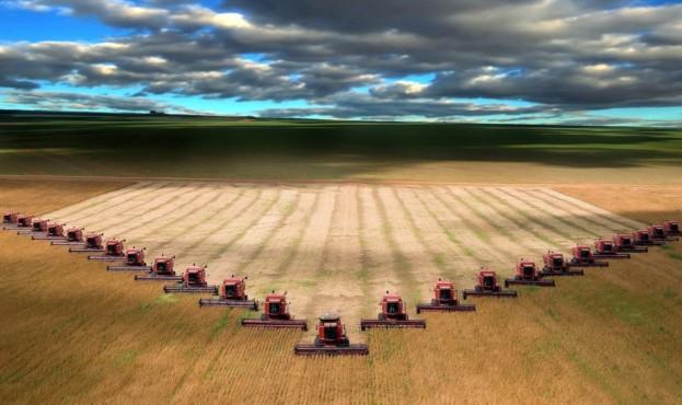 Nature___Fields_Harvesting_042064_