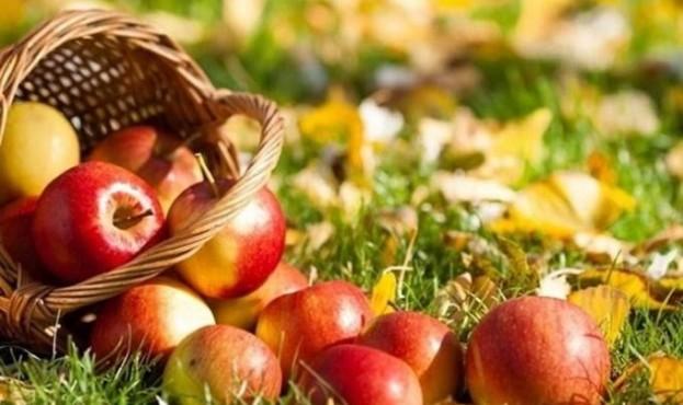 яблука-680x445