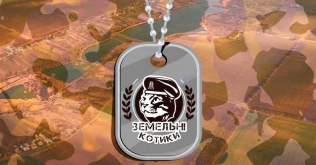 kotiki-kartinka-v-novost-47604