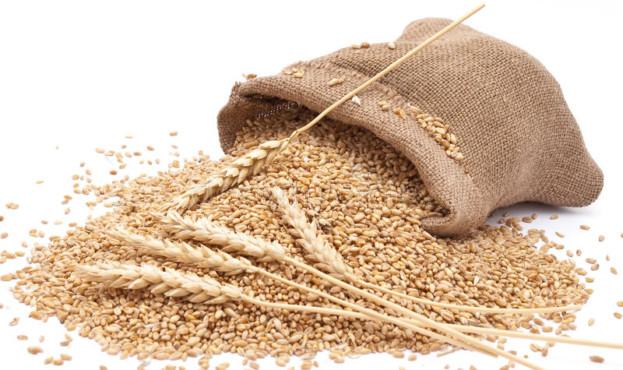 мешок-разбросал-пшеницу-16133399