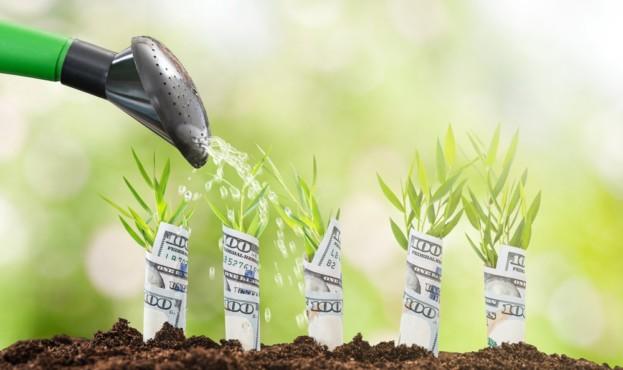 Watering-Your-Money-Garden