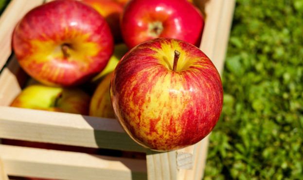 apple-1589874_1920_d_850
