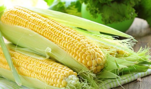 kukuruza-2 (1)