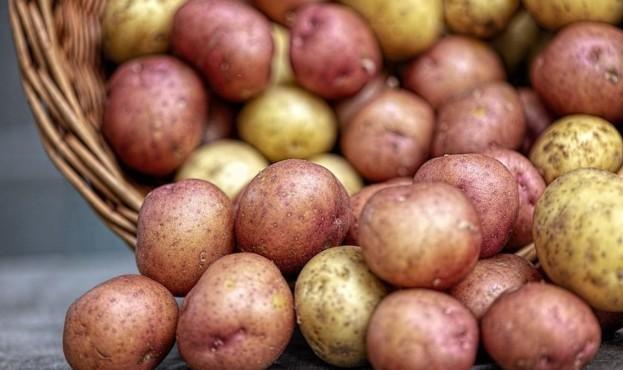 __medium_картофан.jpg