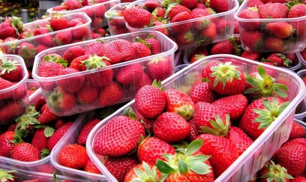strawberries-2462398_960_720