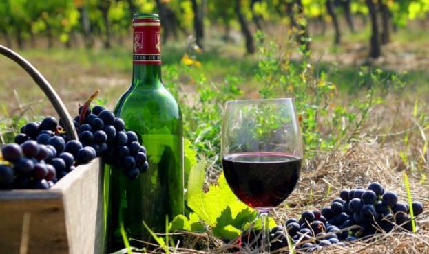 vinograd-i-vino-виноград-вино-e1590049742755