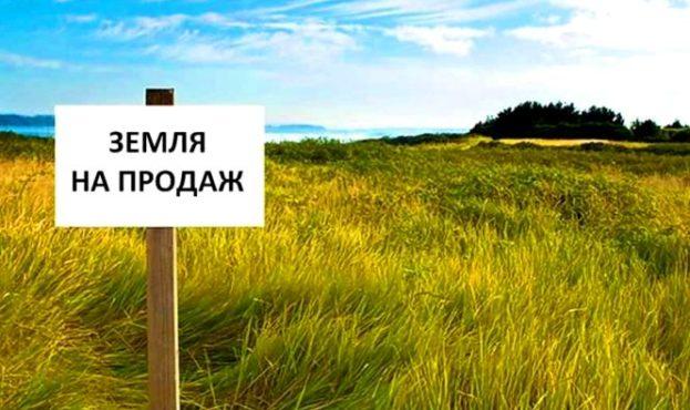 1729892-rinok-zemli-v-ukrayini-scho-zminitsya-i-yak-tse-bude-pratsyuvati